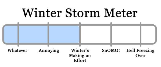 snowy apocalypse meter 2011-01-17
