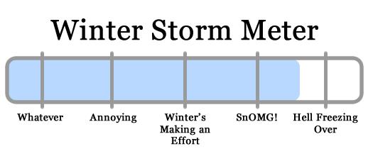 snowy apocalypse meter 2011-01-31