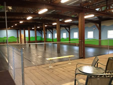 spaw city indoor dog park