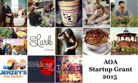 startup grant 2015 entry composite