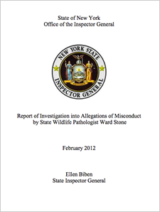 state IG ward stone report cover
