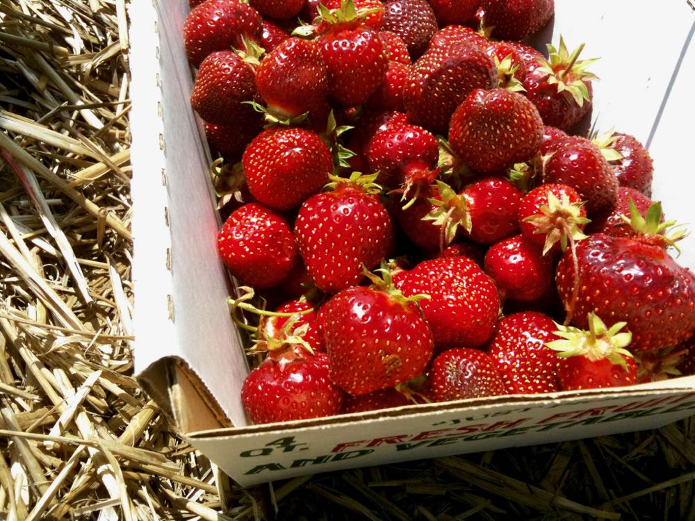 strawberries in basket straw closeup