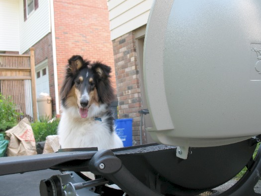 Otto at the grill
