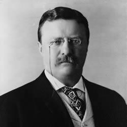 Teddy Roosevelt closeup