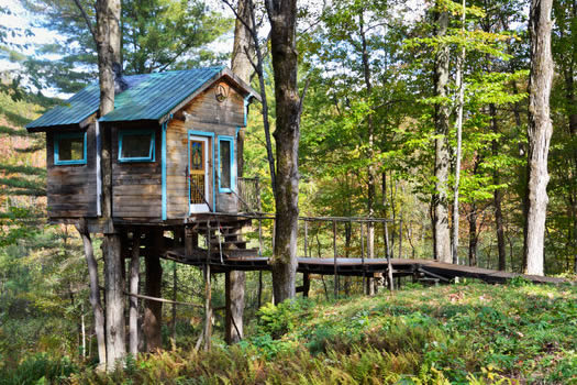 tiny fern forest treehouse airbnb