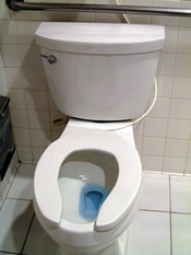 toilet with blue water