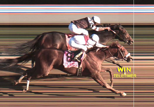 travers 2010 photo finish