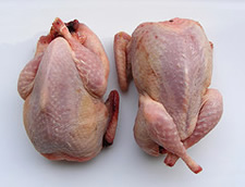 two raw quail