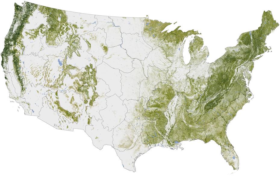 us tree mass density nasa
