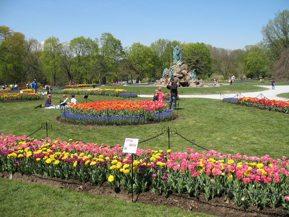 washington_park_tulips_2012-04-20_2.jpg