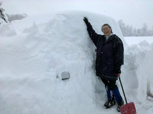 westerlo snowpocalypse