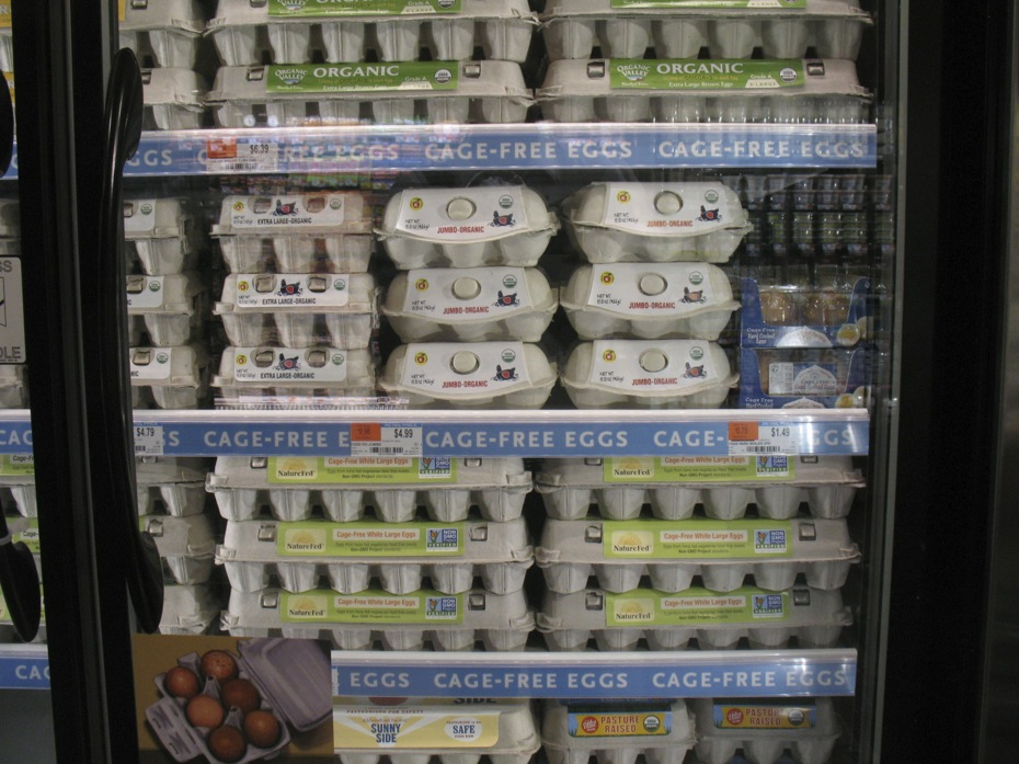 whole_foods_colonie_center_12.jpg