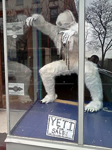 yeti_for_sale_troy_kgigante.jpg
