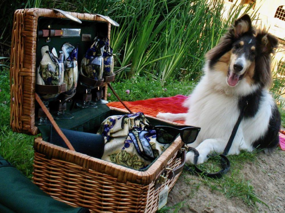 young Otto with picnic basket