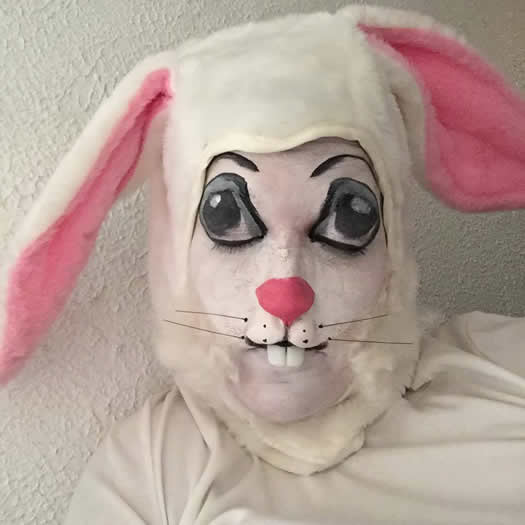 Startups2017 MakeupCurio rabbit