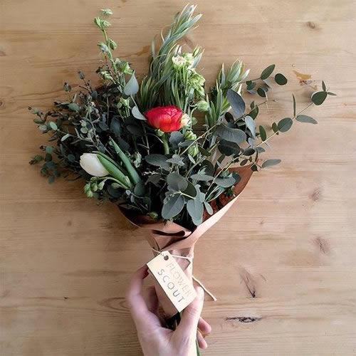 flower_scout_4.jpg